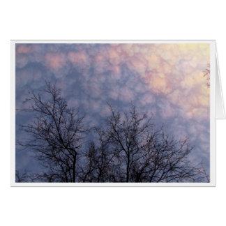 Treetops Light card