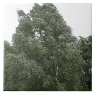 Treetops Tile