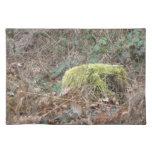 treetrunk cubierto en musgo mantel individual