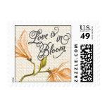 Trellis - Love is in Bloom - 4C - Orange Stamp