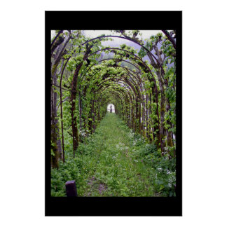 Trellis Tunnel - Germany Poster