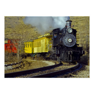 Tren #25 del museo del ferrocarril del estado de N Poster