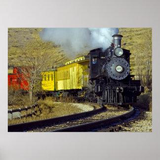 Tren #25 del museo del ferrocarril del estado de N Póster