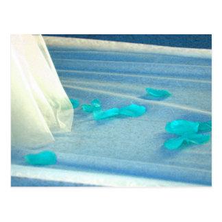Tren azul del vestido de boda de los pétalos color tarjeta postal