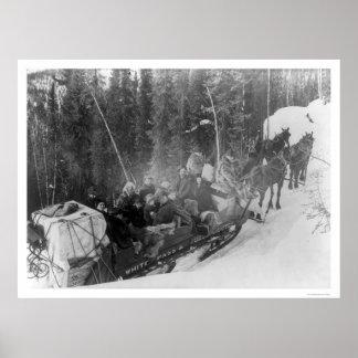 Tren blanco 1903 del trineo de Alaska del paso Posters