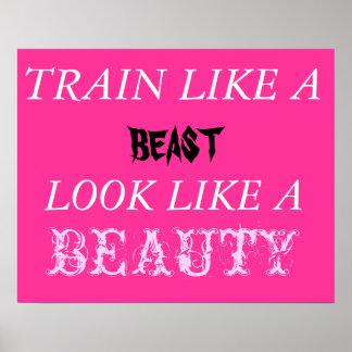 Tren como un parecer de la bestia una belleza impresiones