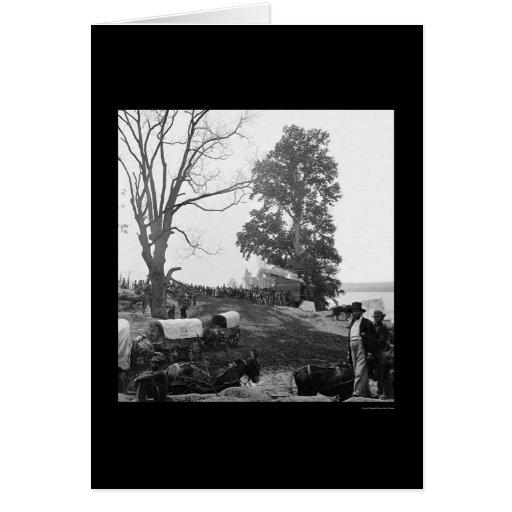 Tren de carromatos 1864 de la campaña del desierto tarjetas