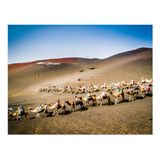 Tren del camello en Lanzarote Postales