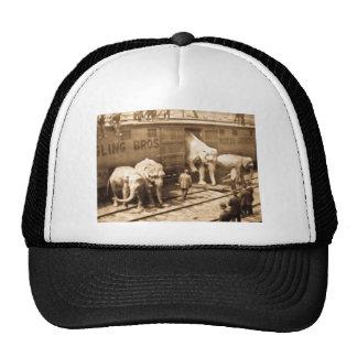 Tren del elefante de Ringling Bros de la diapositi Gorro De Camionero