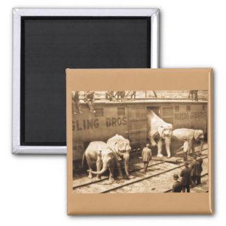 Tren del elefante de Ringling Bros de la diapositi Imán Cuadrado