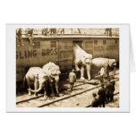 Tren del elefante de Ringling Bros de la diapositi Tarjeton
