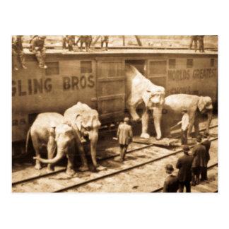 Tren del elefante de Ringling Bros de la Tarjetas Postales