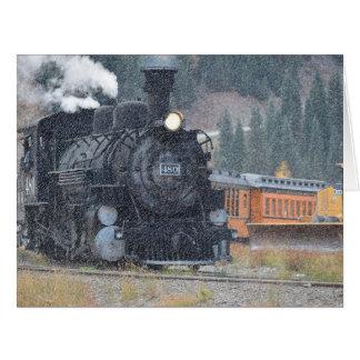Tren del indicador estrecho de Durango Silverton