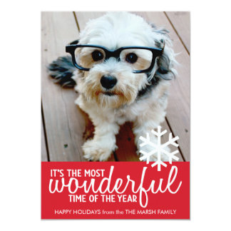 Trendy Christmas Photo Greeting Cards