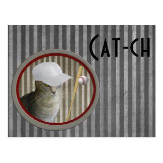 Trendy funny baseball cat cat-ch postcard