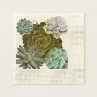 Trendy, Hen's and Chicks, Succulents Napkin