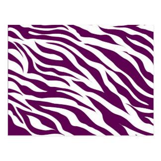 Trendy Purple White Zebra Stripe Wild Animal Print Postcard