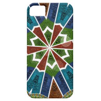 Trendy Sari design iPhone 5 Cases