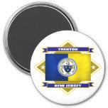 Trenton Diamond 3 Inch Round Magnet