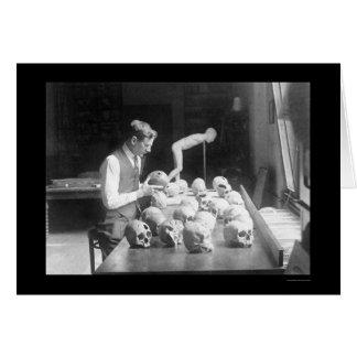 Trepanned Skulls Museum 1926 Cards