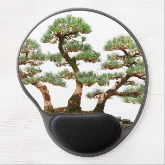 tres árboles de los bonsais del pino alfombrilla gel