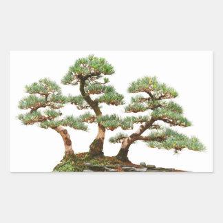 tres árboles de los bonsais del pino pegatina rectangular
