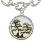 tres árboles de los bonsais del pino pulsera