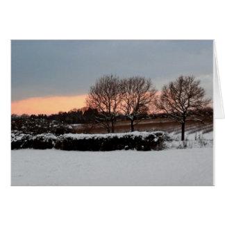 Tres árboles en invierno tarjeta de felicitación