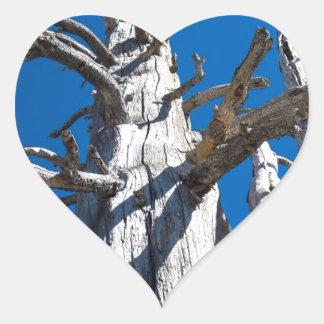 Tres árboles esqueléticos con el cielo azul pegatina en forma de corazón