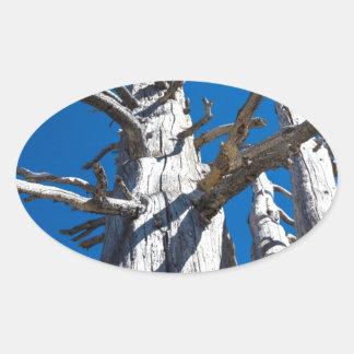 Tres árboles esqueléticos con el cielo azul pegatina ovalada
