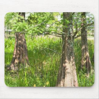 Tres árboles alfombrilla de ratón