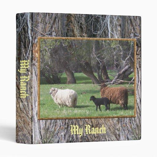 Tres árboles viejos de las ovejas