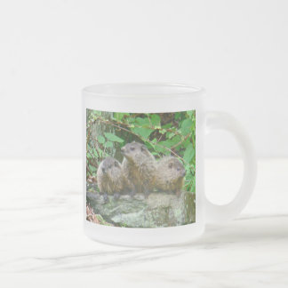Tres bebé Groundhogs Taza