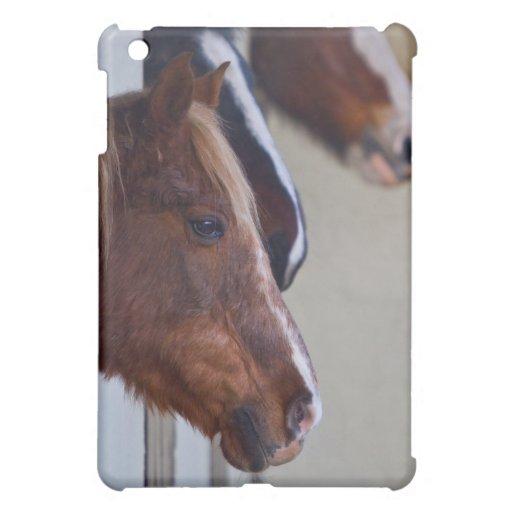 Tres caballos en caso del iPad de los establos