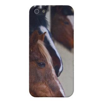 Tres caballos en caso del iPhone 4 de los establos iPhone 5 Funda