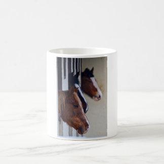 Tres caballos en taza de los establos