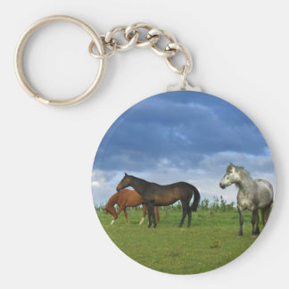 Tres caballos hermosos en día de verano soleado llavero redondo tipo pin