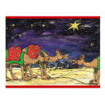 Tres camellos sabios tarjetas postales