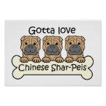 Tres chinos Shar-Peis Poster