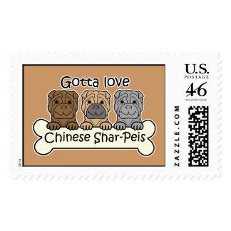 Tres chinos Shar-Peis