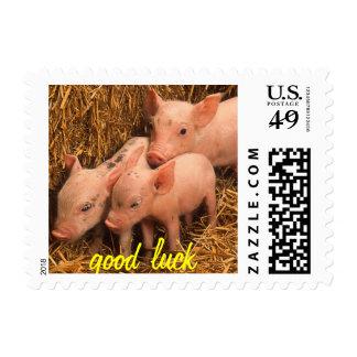 tres cochinillos timbres postales