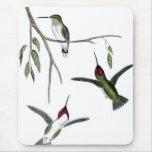 Tres colibríes verdes alfombrilla de ratón