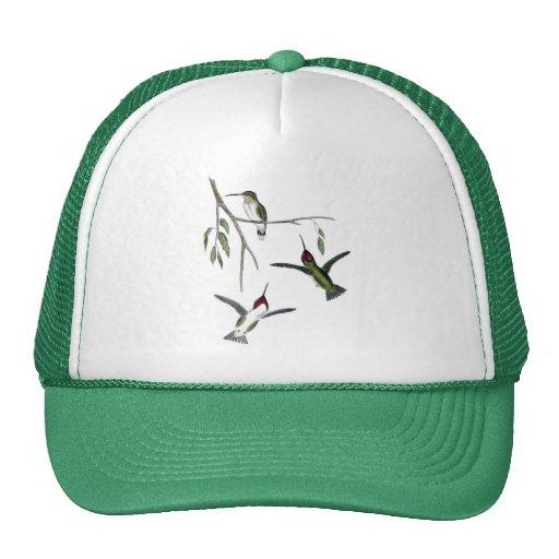 Tres colibríes verdes gorros bordados