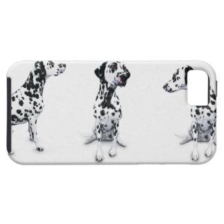 Tres Dalmatians Funda Para iPhone 5 Tough