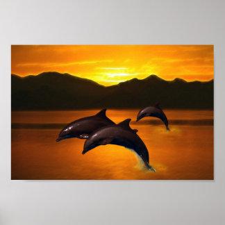 Tres delfínes en la puesta del sol póster
