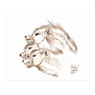 Tres dirigieron el Hyena Postales