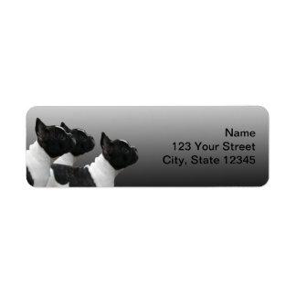 Tres dogos franceses blancos y negros etiqueta de remitente