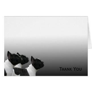 Tres dogos franceses blancos y negros tarjeta pequeña