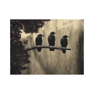 Tres en un árbol impresión en lienzo