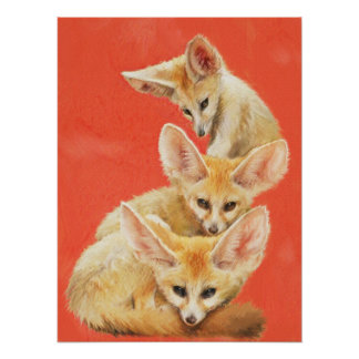 Tres equipos del Fox de Fennec Póster